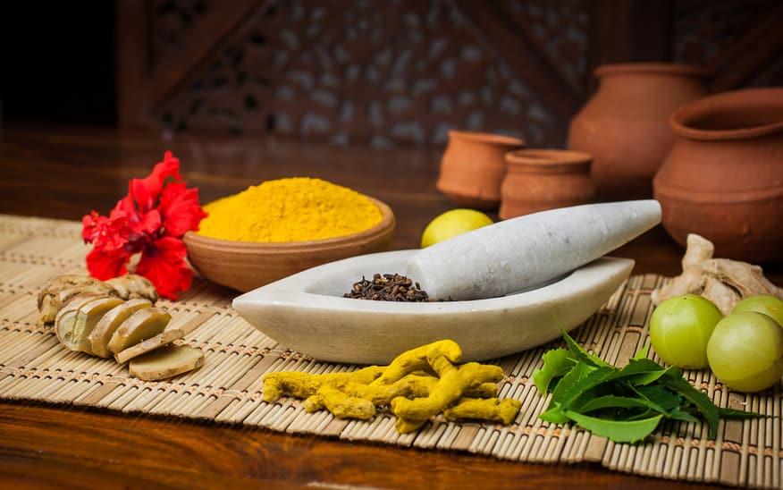 Ayurveda und Yoga Heilkräuter und Heilpflanzen