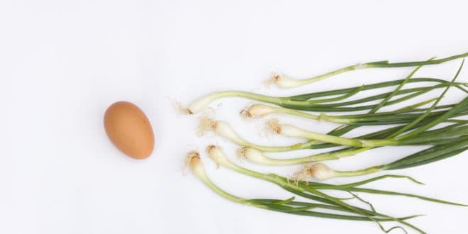 Fruchtbarkeit steigern Mann Ernährung