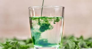 Chlorophyll kaufen